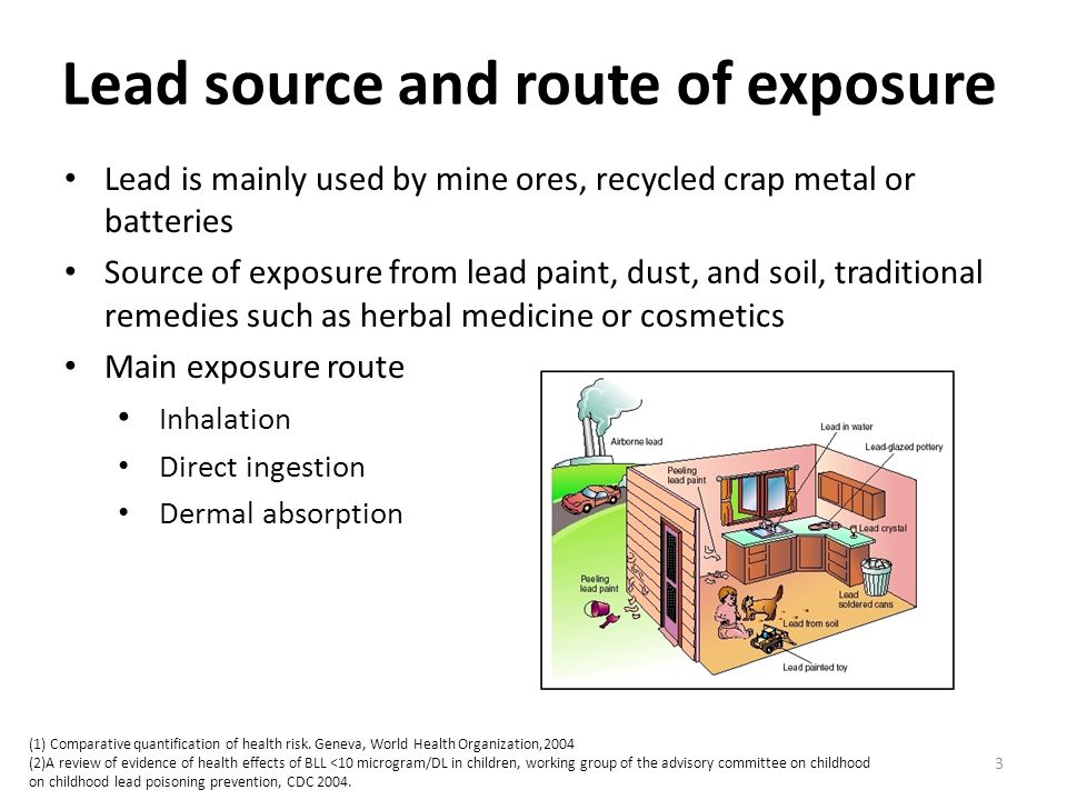 Lead source and route of exposure