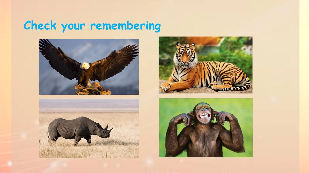 Check your remembering