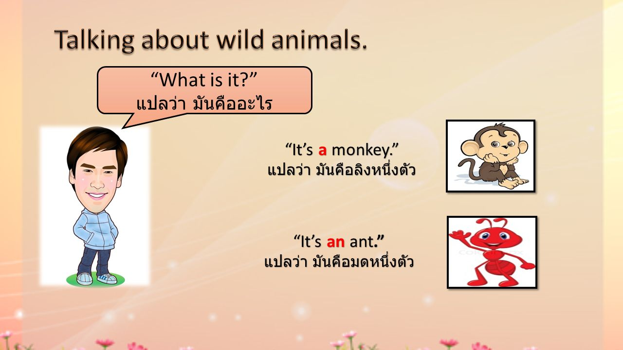 Talking about wild animals.
