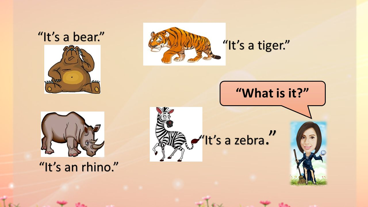 It's a bear. It's a tiger. What is it It's a zebra. It's an rhino.
