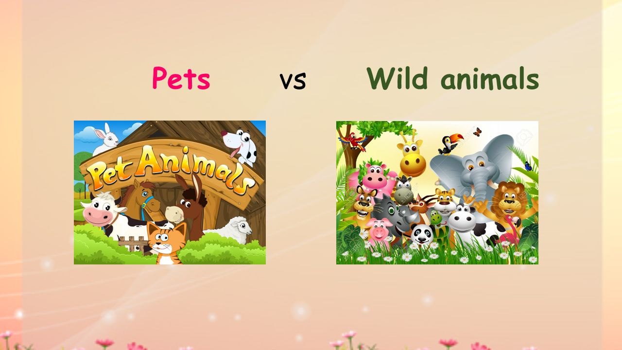 Pets vs Wild animals
