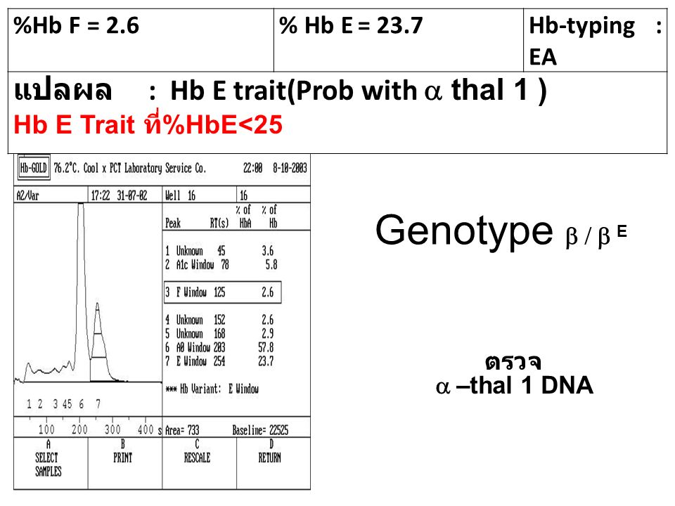 Genotype b / b E แปลผล : Hb E trait(Prob with a thal 1 ) %Hb F = 2.6