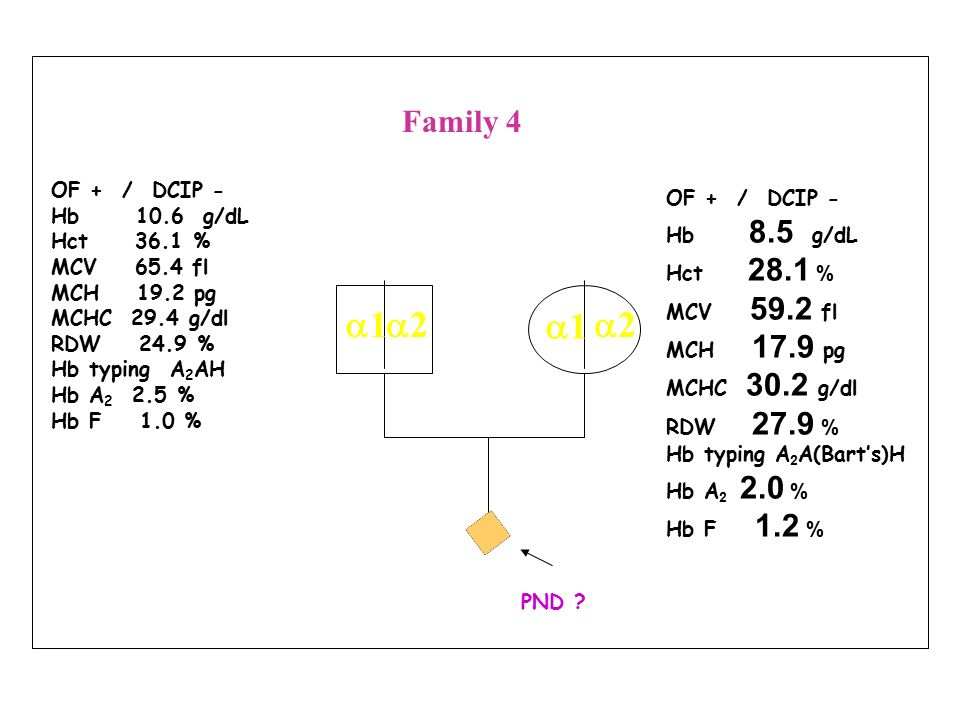 a1 a2 a1 a2 Family 4 OF + / DCIP - OF + / DCIP - Hb 10.6 g/dL