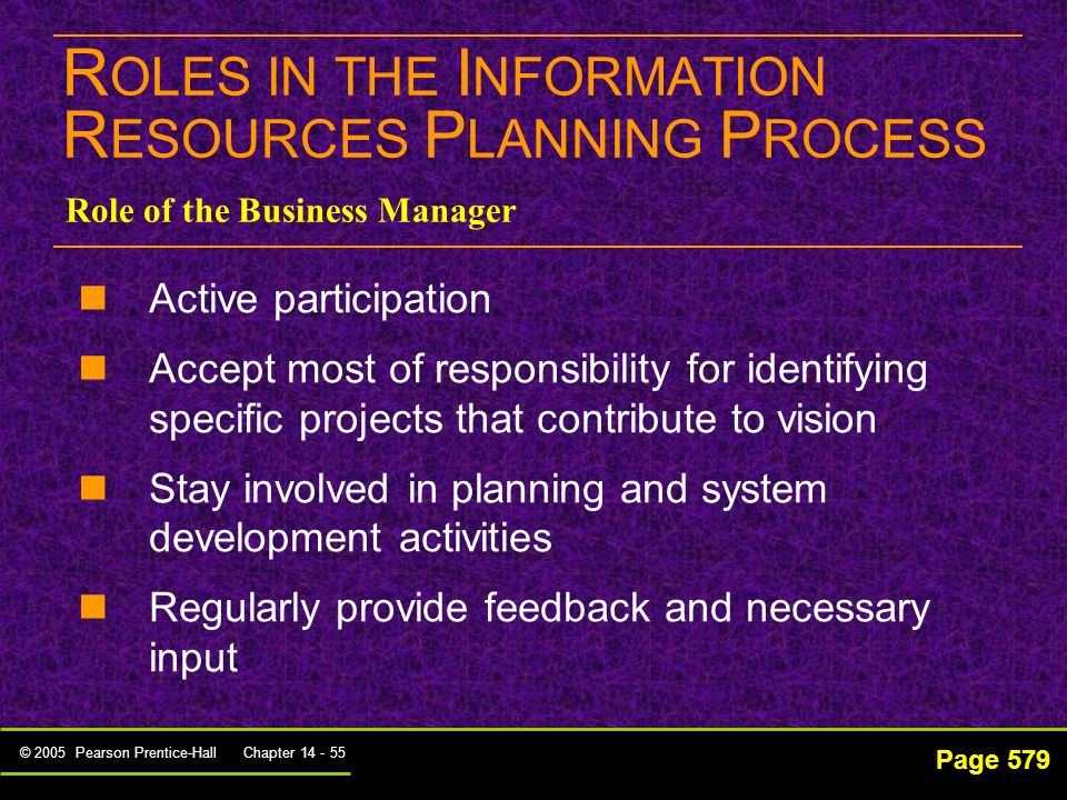 ROLES IN THE INFORMATION RESOURCES PLANNING PROCESS