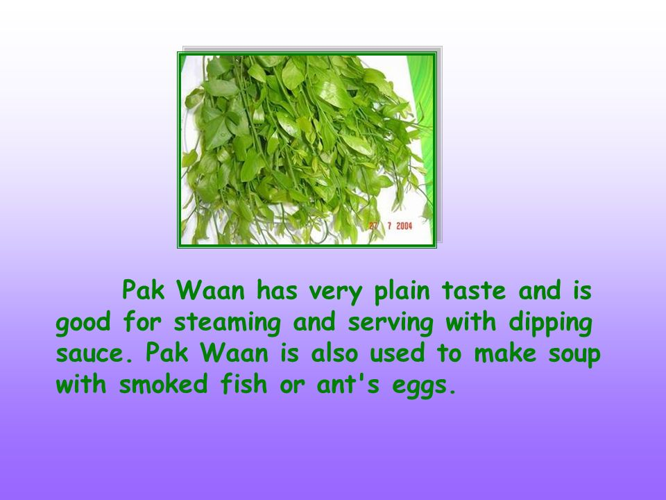 Pak Waan has very plain taste and is good for steaming and serving with dipping sauce.
