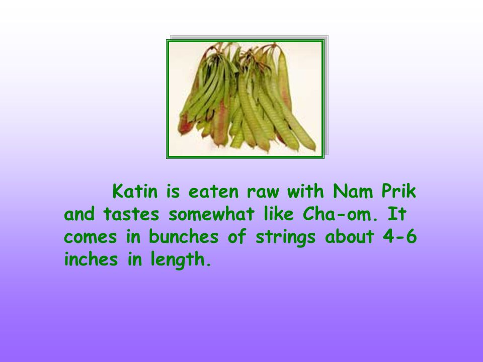 Katin is eaten raw with Nam Prik and tastes somewhat like Cha-om
