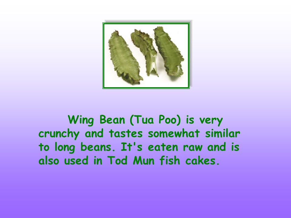 Wing Bean (Tua Poo) is very crunchy and tastes somewhat similar to long beans.