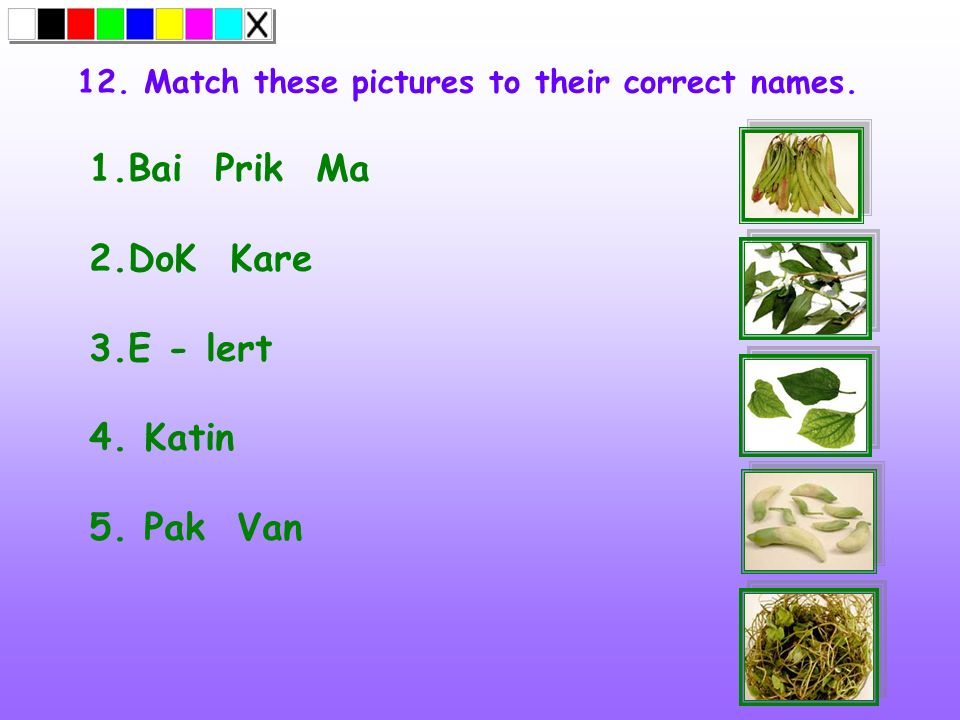 12. Match these pictures to their correct names.