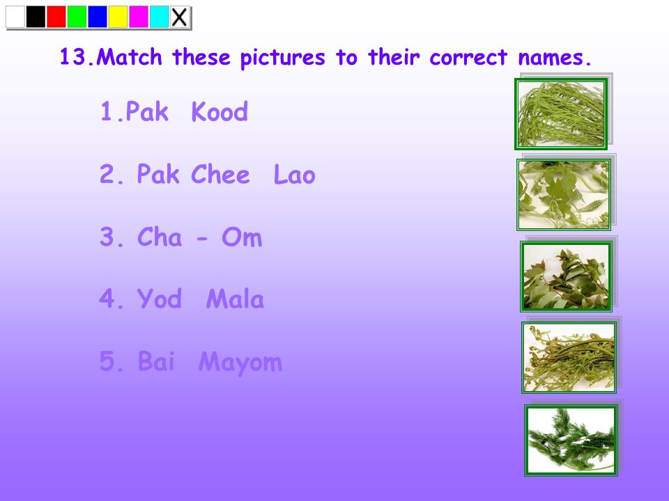 13.Match these pictures to their correct names.