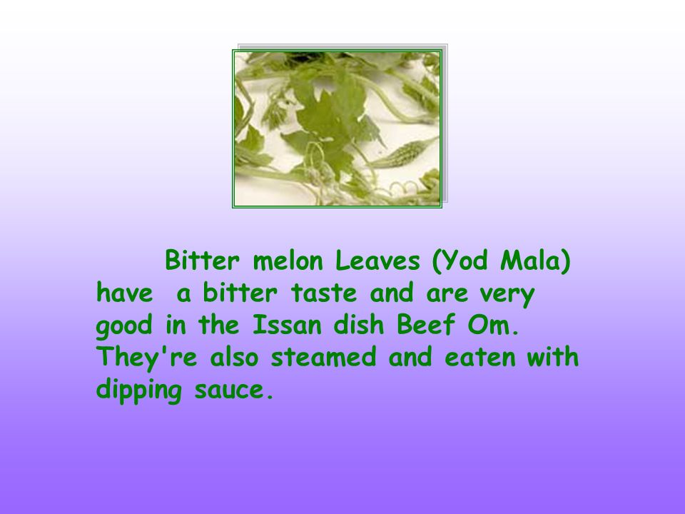 Bitter melon Leaves (Yod Mala) have a bitter taste and are very good in the Issan dish Beef Om.