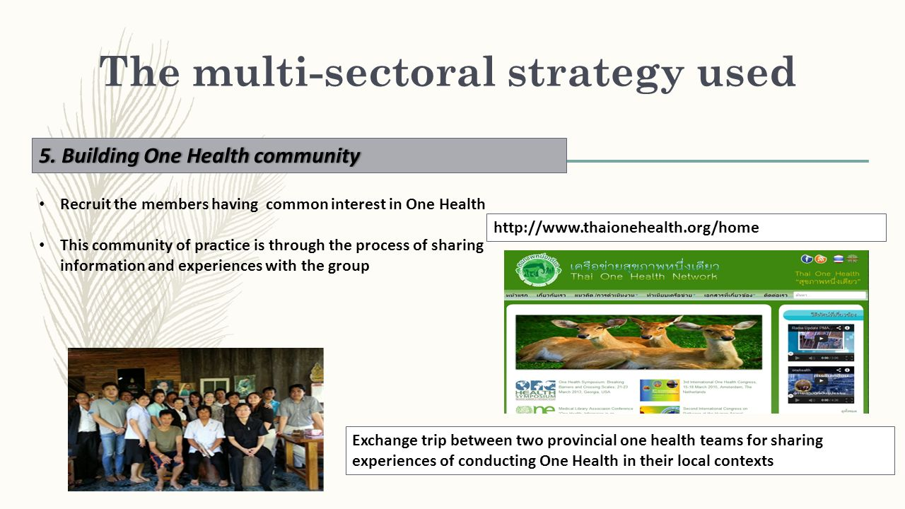 The multi-sectoral strategy used