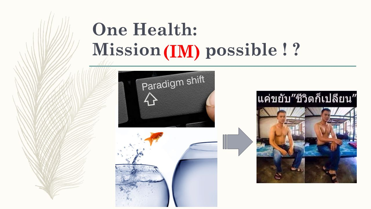 One Health: Mission ! possible (IM)