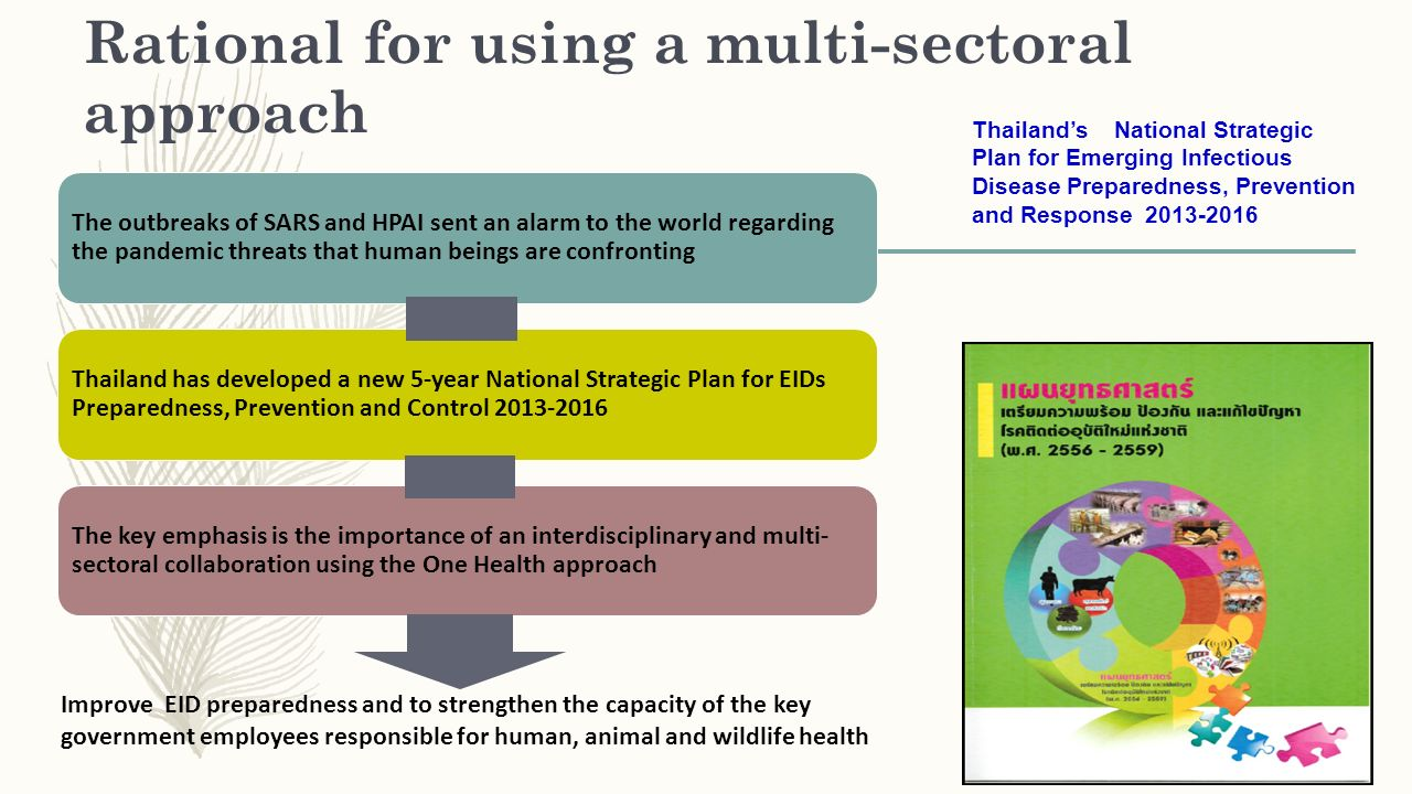 Rational for using a multi-sectoral approach