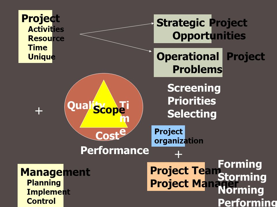 + + Project Strategic Project Opportunities Operational Project