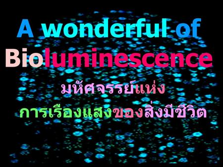 A wonderful of Bioluminescence