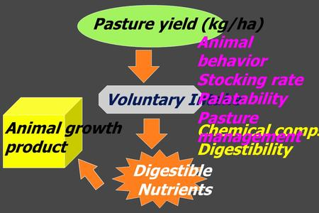Chemical compsition Digestibility Pasture yield (kg/ha) Voluntary Intake Digestible Nutrients Animal growth product Animal behavior Stocking rate Palatability.