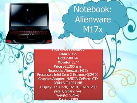Notebook: Alienware M17x