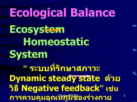 Ecological Balance Ecosystem Homeostatic System
