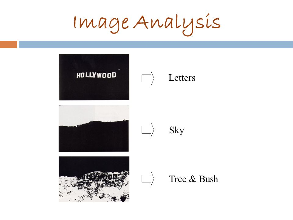 Image Analysis Letters Sky Tree & Bush