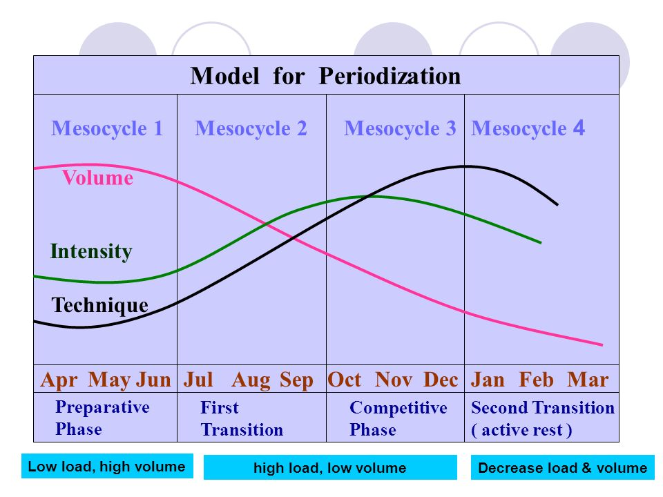Model for Periodization