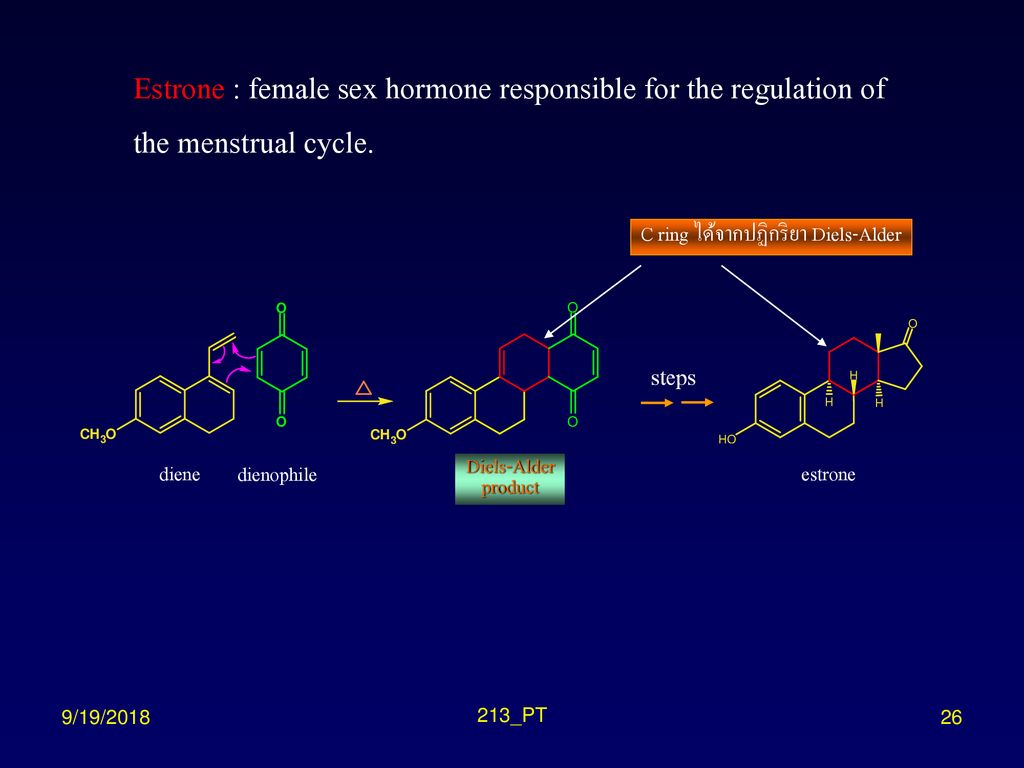 Estrone : female sex hormone responsible for the regulation of