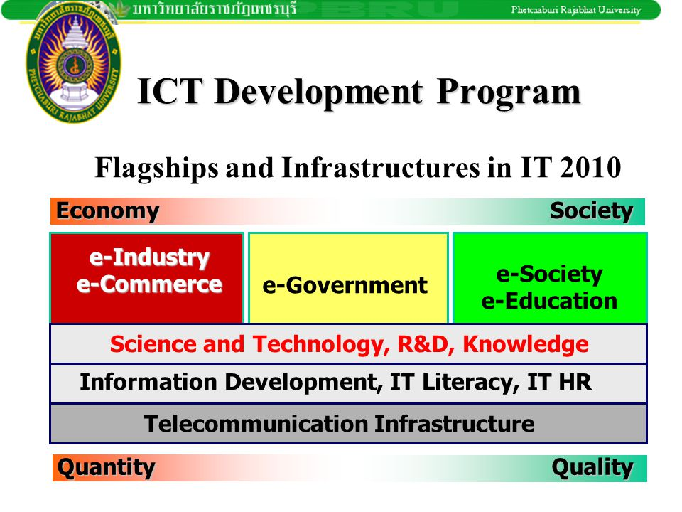 ICT Development Program Flagships and Infrastructures in IT 2010