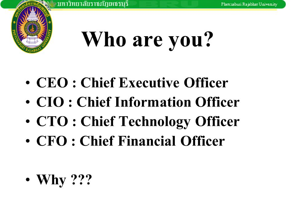 Who are you CEO : Chief Executive Officer