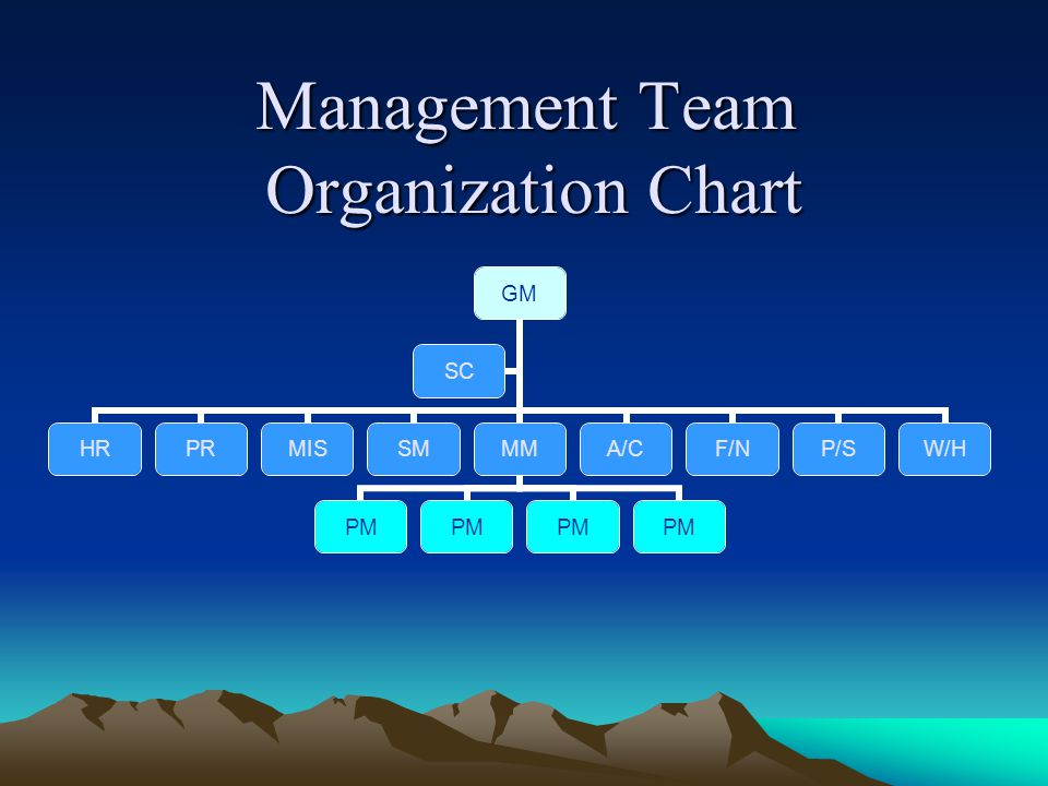 Management Team Organization Chart