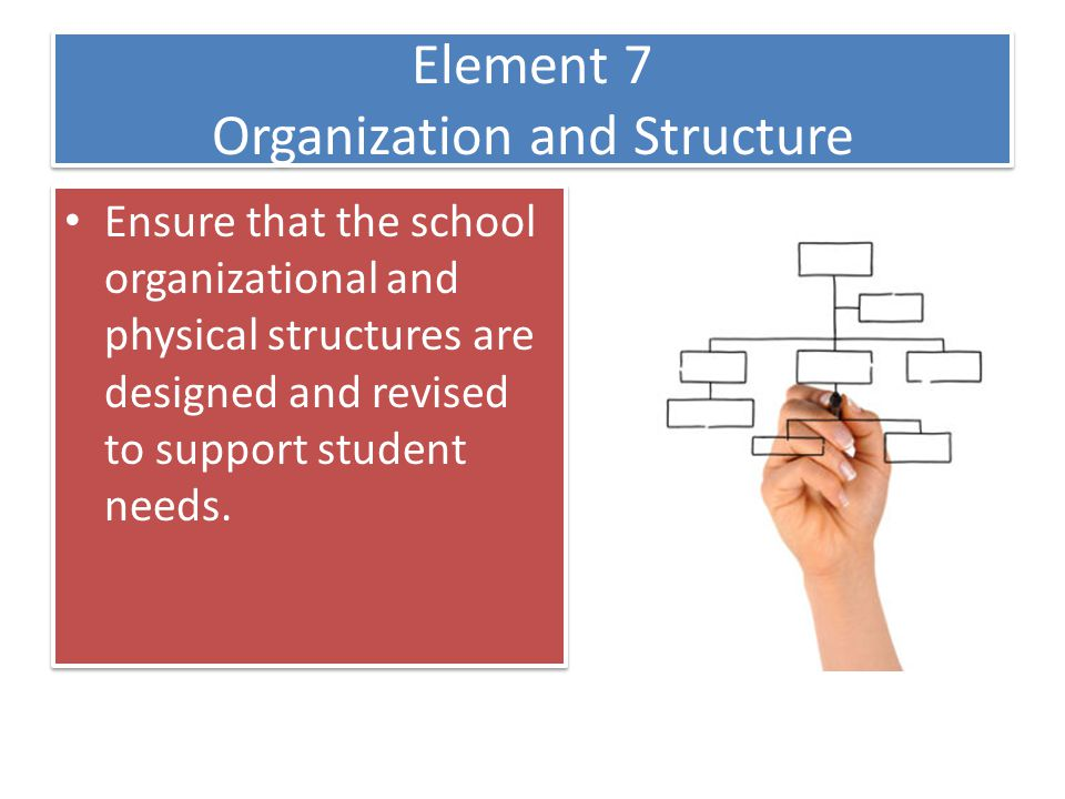Element 7 Organization and Structure