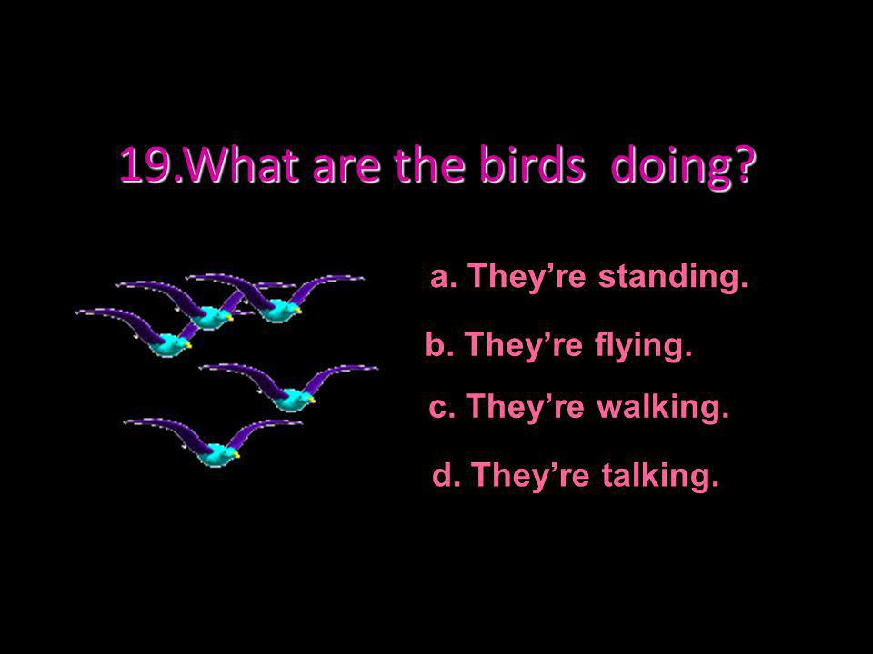 19.What are the birds doing