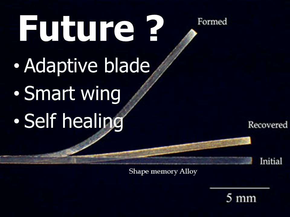 Future Adaptive blade Smart wing Self healing Shape memory Alloy