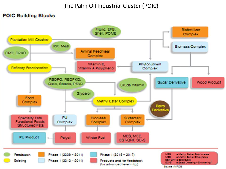 The Palm Oil Industrial Cluster (POIC)