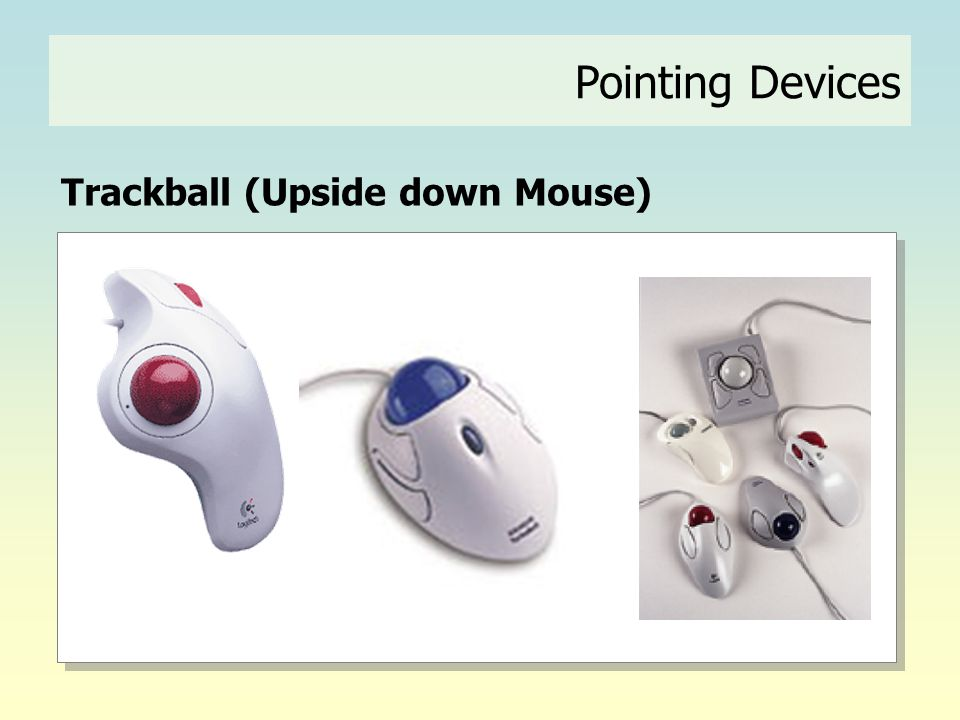 Pointing Devices Trackball (Upside down Mouse)