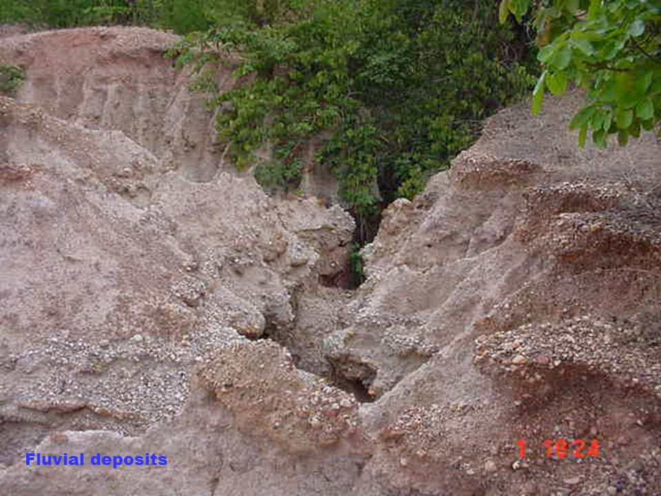 Fluvial deposits