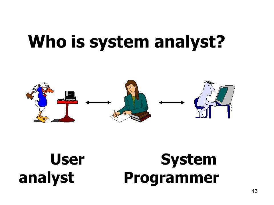 Who is system analyst User System analyst Programmer