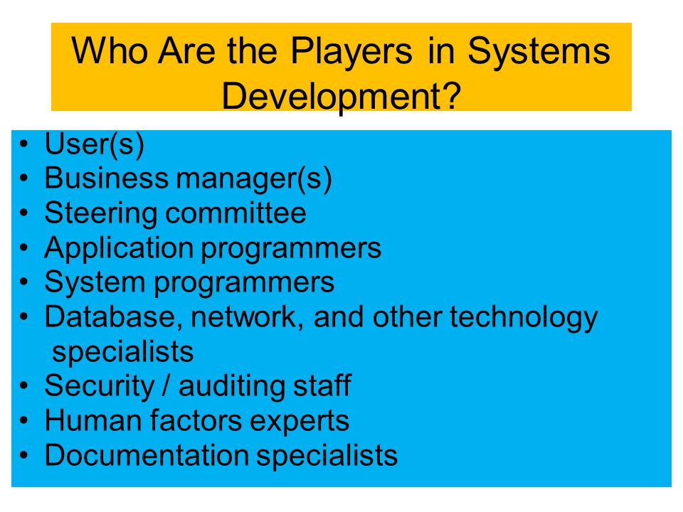 Who Are the Players in Systems Development