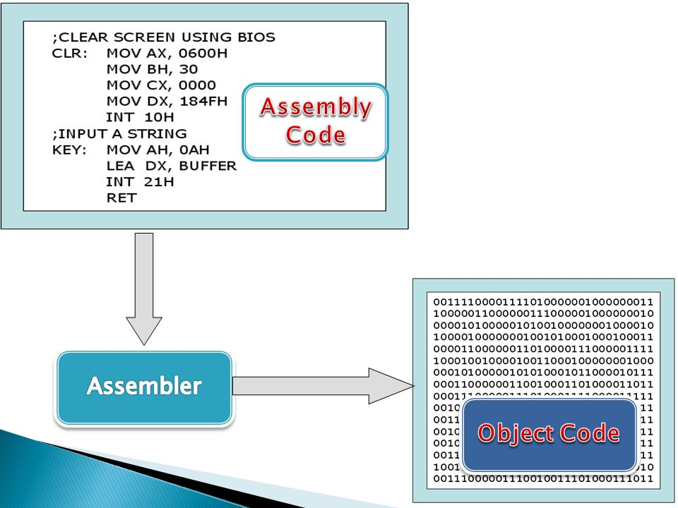 Assembly Code Object Code