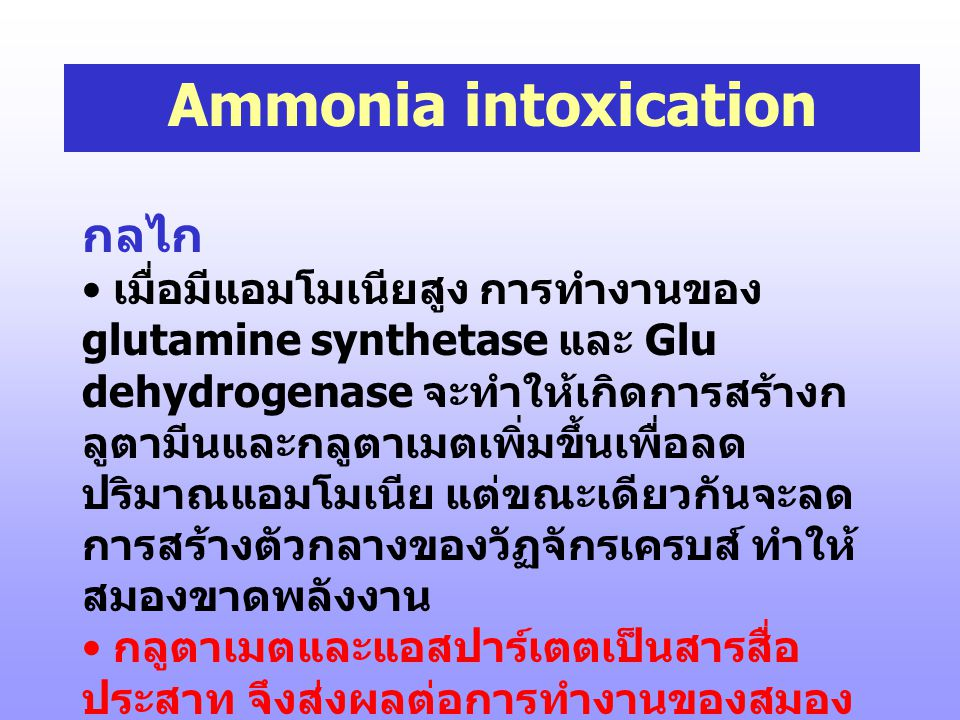Ammonia intoxication กลไก