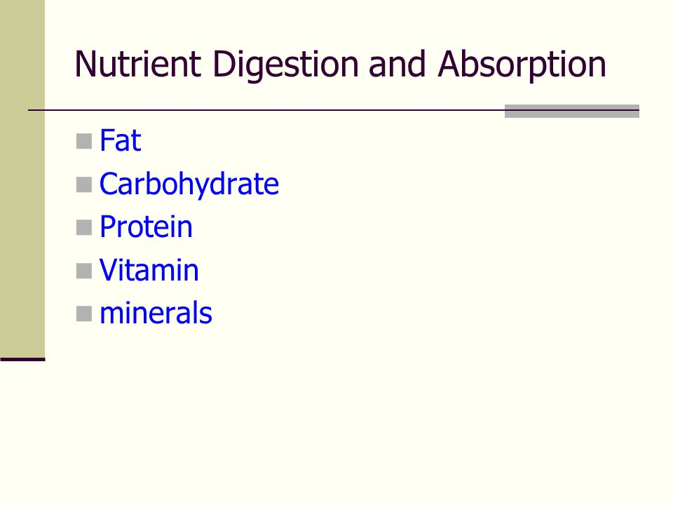 Nutrient Digestion and Absorption