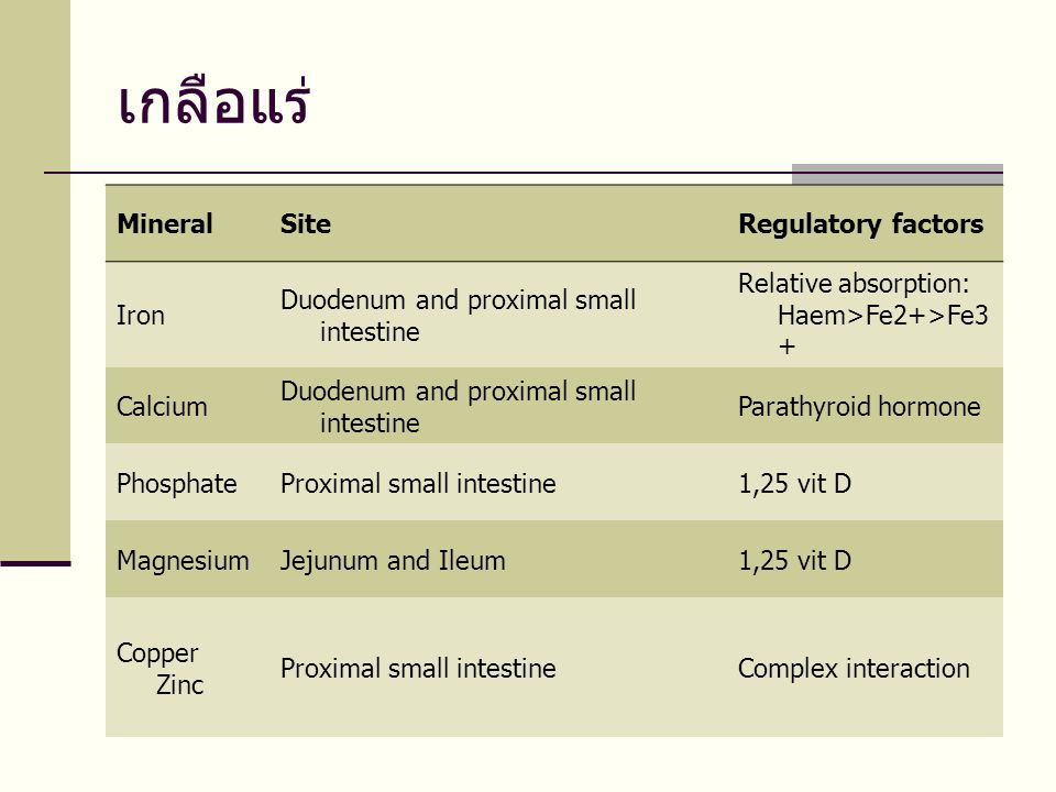 เกลือแร่ Mineral Site Regulatory factors Iron