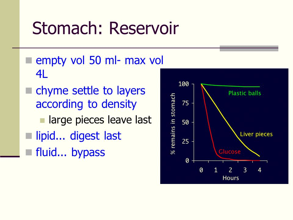 Stomach: Reservoir empty vol 50 ml- max vol 4L