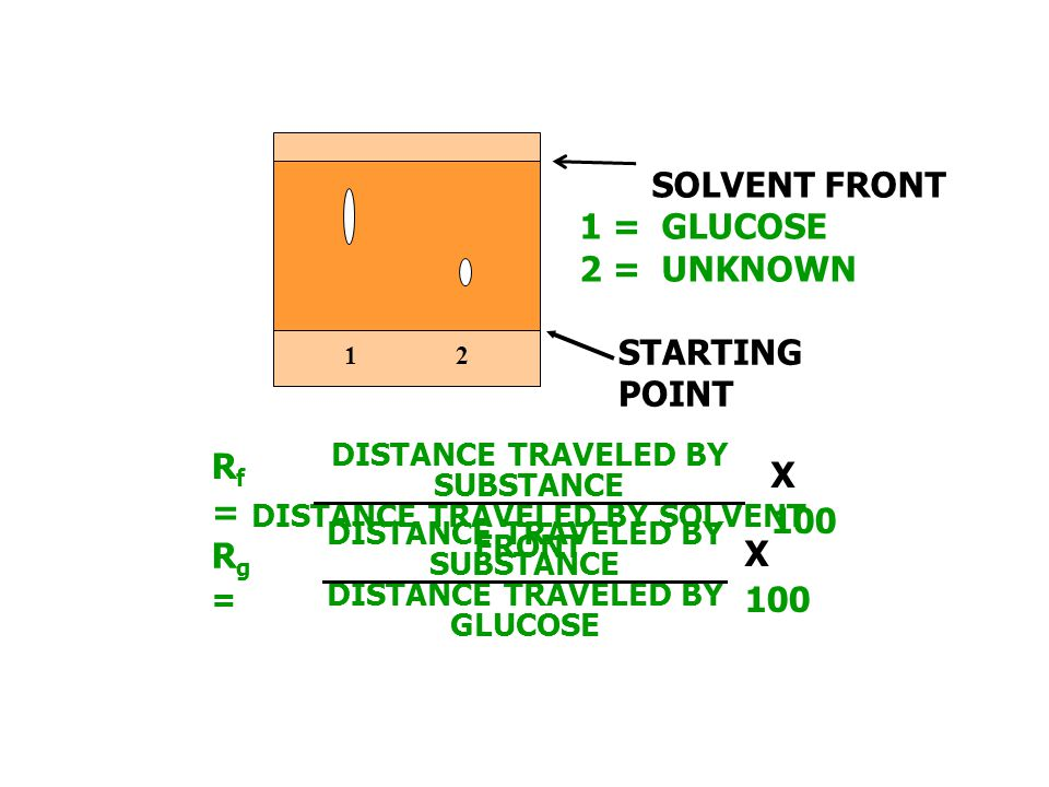 SOLVENT FRONT 1 = GLUCOSE 2 = UNKNOWN