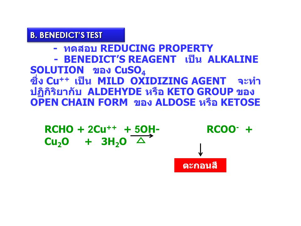 B. BENEDICT'S TEST - ทดสอบ REDUCING PROPERTY - BENEDICT'S REAGENT เป็น ALKALINE SOLUTION ของ CuSO4.