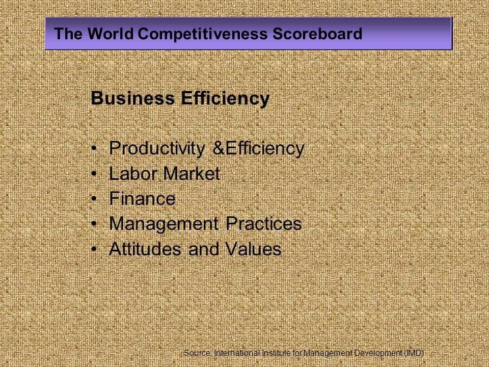 Productivity &Efficiency Labor Market Finance Management Practices