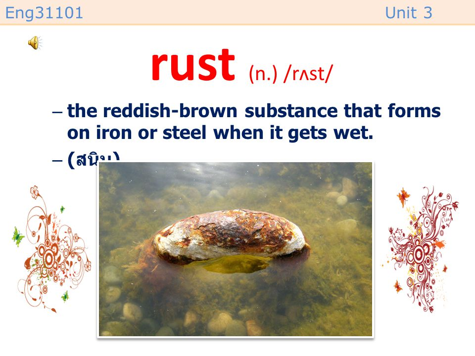 rust (n.) /rʌst/ the reddish-brown substance that forms on iron or steel when it gets wet. (สนิม)