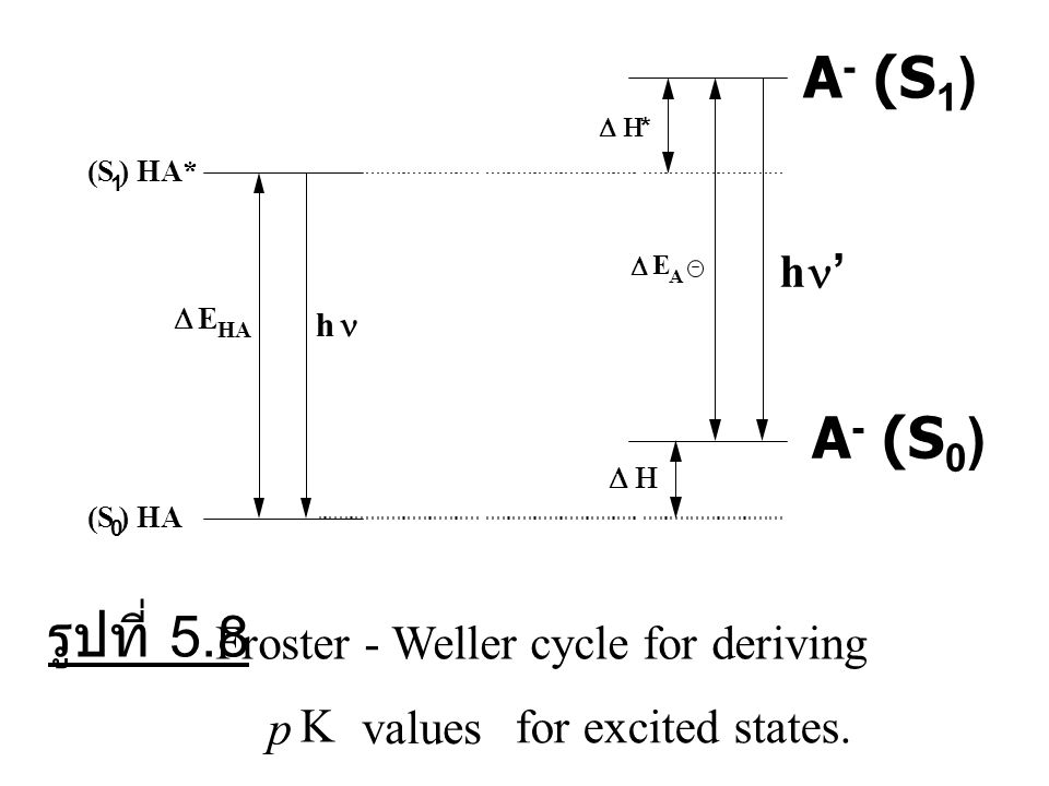 A- (S1) A- (S0) รูปที่ 5.8 Froster - Weller cycle for deriving p K