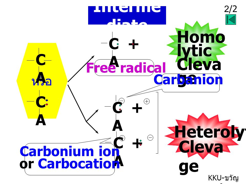 Intermediate Homolytic Clevage Heterolytic Clevage C + A C A C A C + A