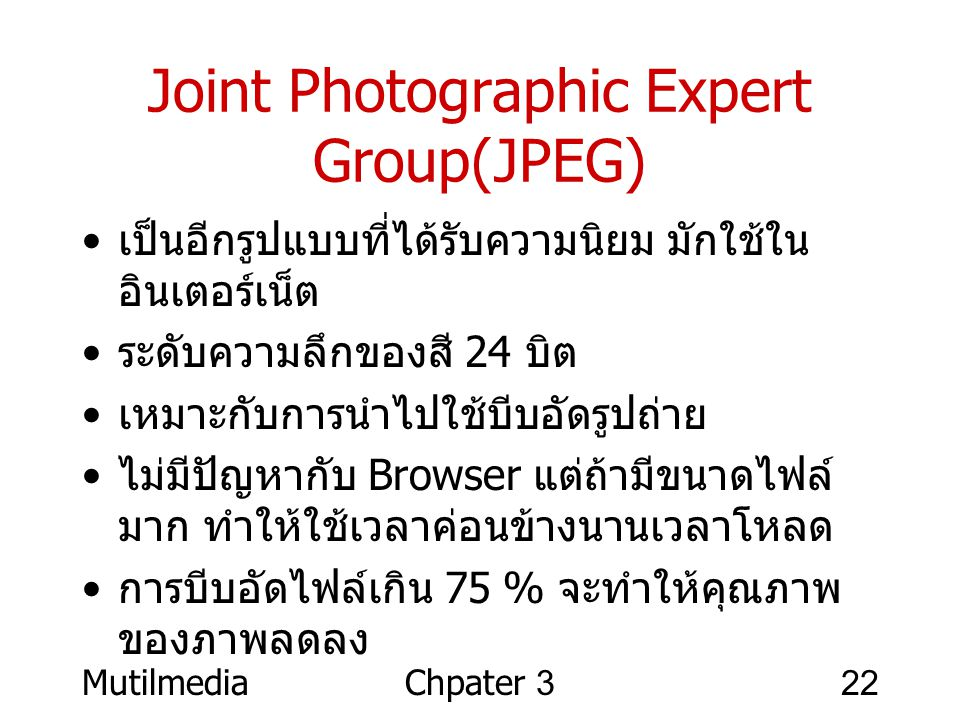 Joint Photographic Expert Group(JPEG)