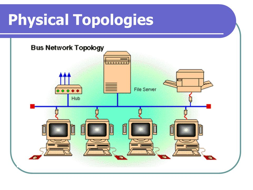 Physical Topologies Bus Network Topologies