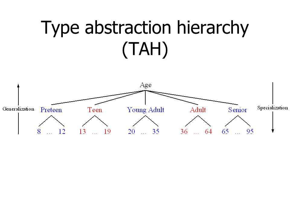 Type abstraction hierarchy (TAH)
